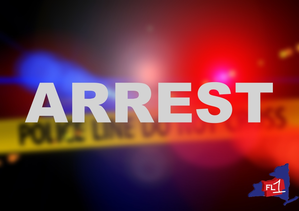 Seneca Falls woman charged after alleged theft